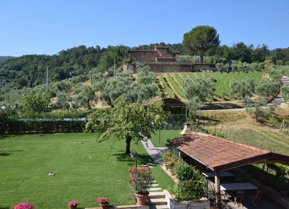 Special Offer Spring Hoilidays in Tuscany Farmhouse  with 1 Night Free