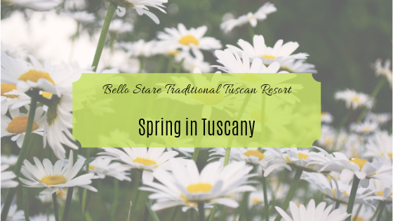 YOU HAVE STILL TIME TO ORGANIZE YOUR SPRING HOLIDAY IN TUSCANY!